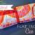 Free Sewing Pattern:  Curling Iron / Flat Iron Travel Case